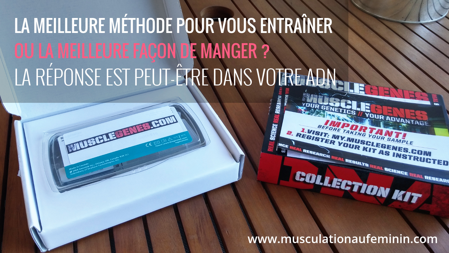 Guide d entra nement des fessiers musculation au f minin for Guide musculation