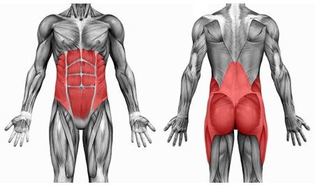 Programme musculation running