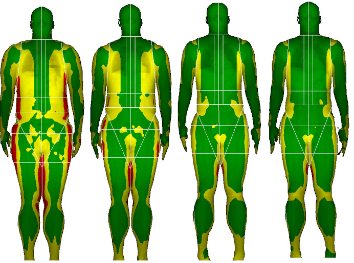 body-composition