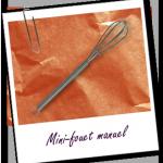 mini-fouet-inox-aromazone