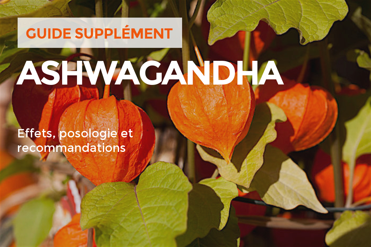 ashwaganda-supplement-sport-force