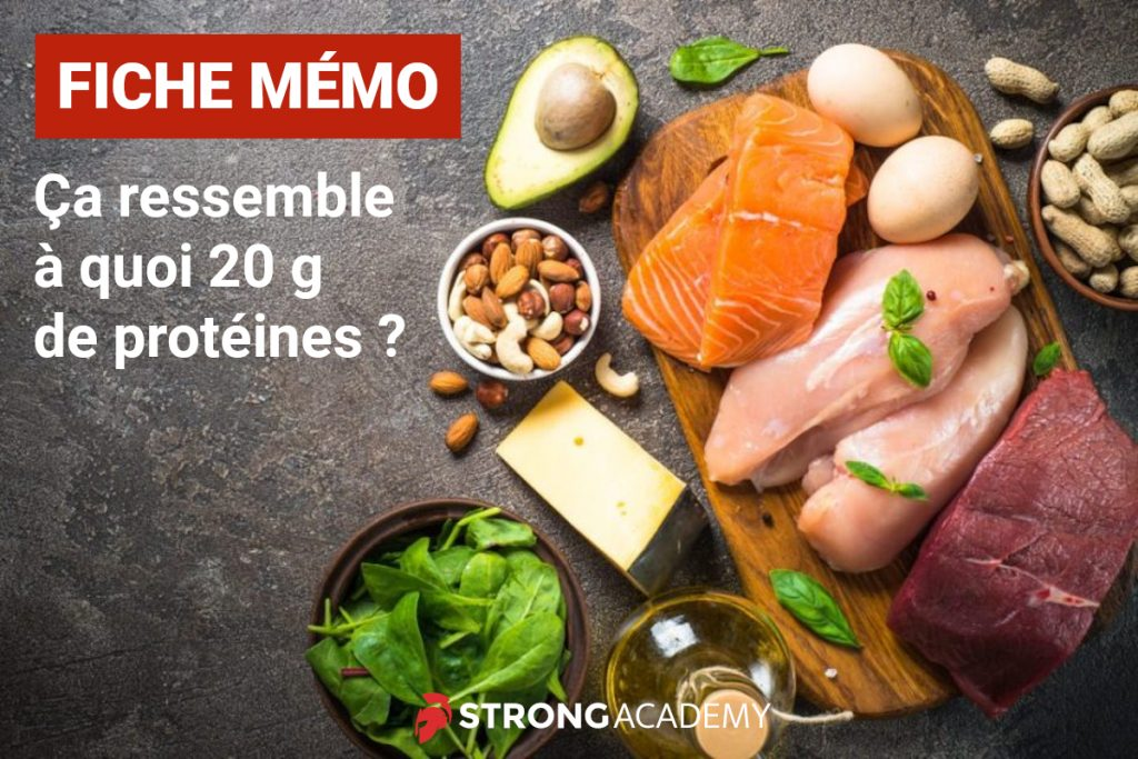 fiche-memo-proteines-musculation-fitness-femme-strong-academy